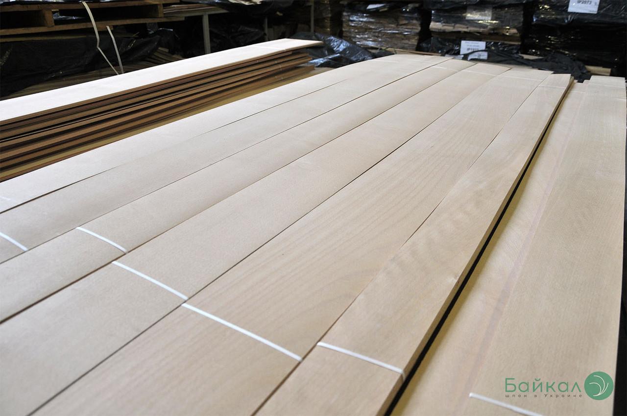Шпон Бука - 0,6 мм довжина від 0,50 - 0,75 м / ширина від 9 см (I гатунок)