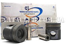Поршня ДВЗ комплект (613 E4) TATA Motors