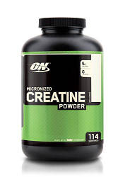 ON Creatine Powder 600 g