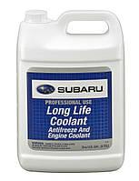 Антифриз концентрат Subaru Antifreeze Long Life Coolant 3,785 л