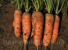 Семена моркови Шамарэ 50 гр. Semo