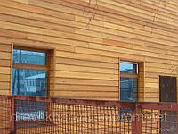 Планкен косой лиственница (АВ) 20-120-3000...4000мм