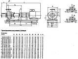 Насос 2СМ 80-50-200а/4, фото 5