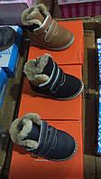 Детские зимние ботинки на овчине для мальчиков  Размеры 21-26