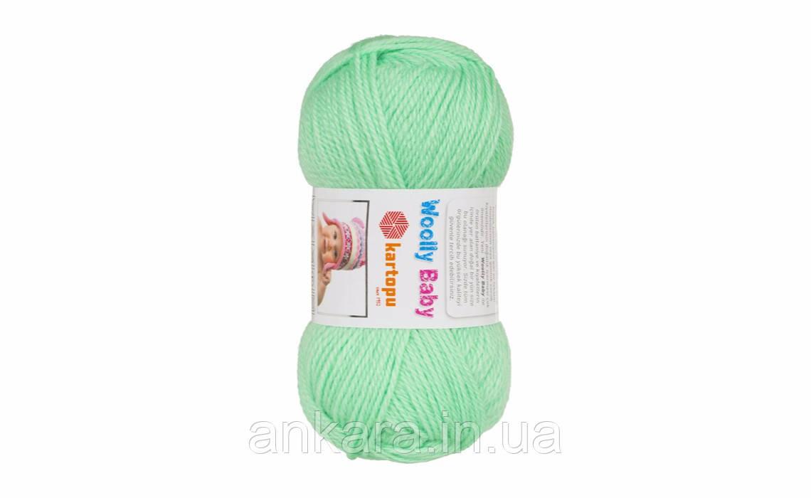 Пряжа Kartopu Woolly Baby K437