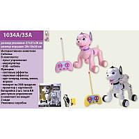 Интерактивная собака на радиоуправлении Puppy 1034-35 (робот собака): 26см, проектор, ездит, звук + свет