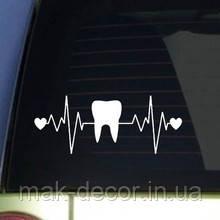 Виниловая наклейка  -  зуб и сердечки( размер 20 см ширина)