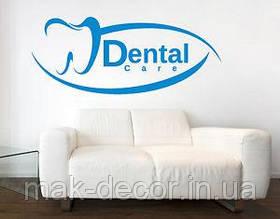 Виниловая наклейка  -  dental зуб( размер 20 см ширина)