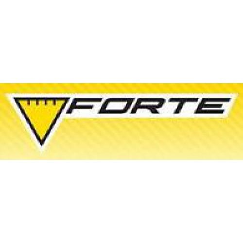 Стабилизатор напряжения Forte