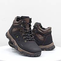 Мужские ботинки Stylen Gard (52112)