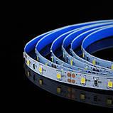 Светодиодная лента BIOM Professional G.2 2835-60 NW нейтральный белый, негерметичная, 5метров, фото 3