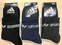Носки мужские спортивные зимние махровые Adidas 41-44 размер ассорти
