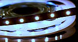 Светодиодная лента BIOM Professional G.2 2835-60 W белый, негерметичная, 5метров, фото 5