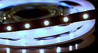Светодиодная лента BIOM Professional G.2 2835-60 W холодный белый, негерметичная, 5метров