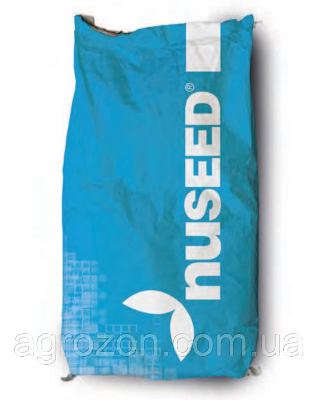 Подсолнечник Nuseed N4XM411 (MidEarly, CL, DMR, OR5) - 1 п.о.