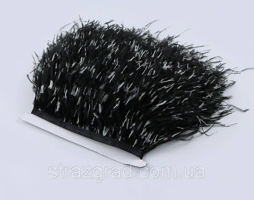 Пір'яна тасьма з пір'я страуса. Bicolor. Перо 10-15см. Ціна за 0,5 м.