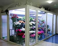 Витрина, холодильная камера для цветов: расчет, поставка и монтаж