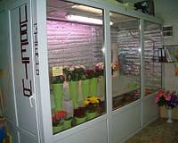Камера холодильная со стеклом для цветов: расчет, поставка и монтаж
