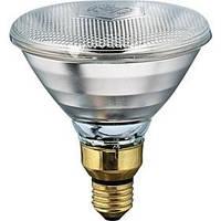 Лампа для обогрева поросят инфракрасная