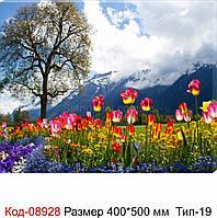 """Картина на холсті """"ГІРСЬКІ ТЮЛЬПАНИ"""" 500*400 мм. Код-08928 Т-19"""
