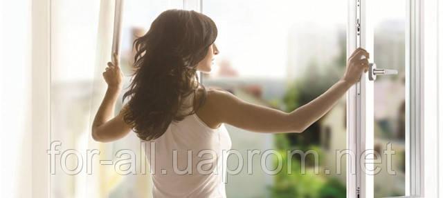 Серенада под окнами на День святого Валентина