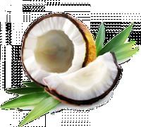 Кокосовое масло холодный отжим 115 мл