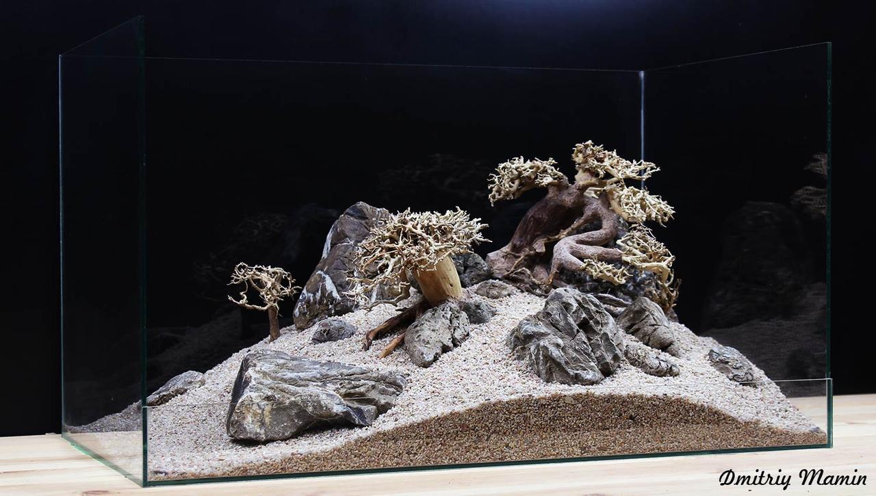 Композиція для акваріума. Бонсаї і Карпатський камінь