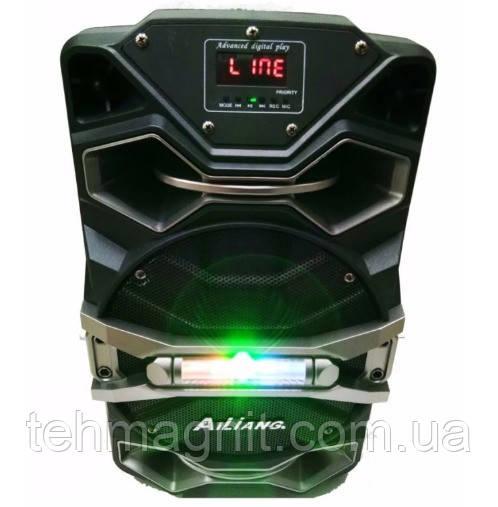 Колонка на акумуляторе с микрофоном Ailiang UF-8008 AK-DT/100W (USB/Bluetooth/FM) акустическая система