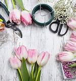 Флористическая проволока, тейп-лента, тычинки для декорирования