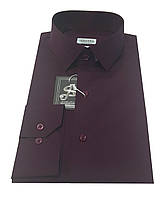 Рубашка мужская приталенная №10-32 - Filafil - Е