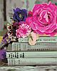 AS0331  Набор живописи по номерам Любимые книги