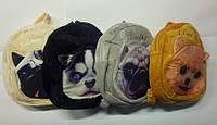"Детский рюкзак ""Мордочки собак"""