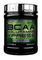 BCAA Scitec Nutrition BCAA + Glutamine Xpress 300 g