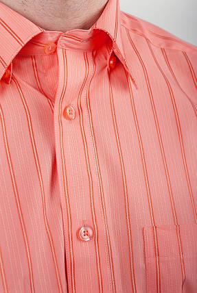 Рубашка Fra №876-17 (Апельсиновый), фото 2