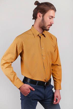 Рубашка мужская в полоску Fra №869-12 (Терракотовый), фото 2