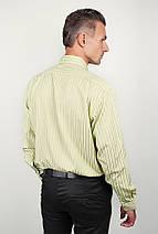 Рубашка светлая в полоску Fra №869-14 (Салатовый), фото 3