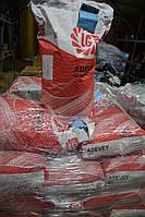 Кукуруза Adevey (Адевей) Лимагрейн ФАО 290, фото 1
