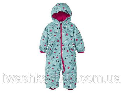 Зимний термо комбинезон для девочки 9 - 12 месяцев, р. 80, Lupilu