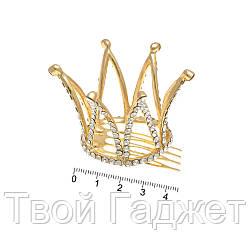 Гребешок 12684