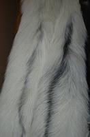 Лиса арктическая, длина 85 см.