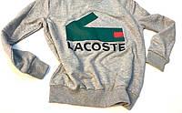 Світшот Lacoste логотип принт   стильна Кофта, фото 1