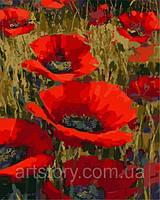 Картина по номерам ArtStory Маковое поле 40 х 50 см (арт. AS0245), фото 1