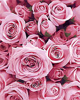 Картина по номерам ArtStory Розы 40 х 50 см (арт. AS0248), фото 1