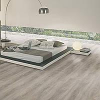 Wineo 400 DB00132 Memory Silver Oak вінілова плитка DB Wood XL