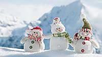 Сервісний центр «Коса-Сервіс» Вітає вас з першим снігом!❄️