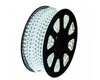 LED 5050 White 100m 220V (1)