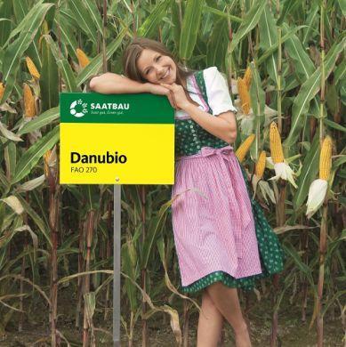 Кукуруза Заатбао Данубіо (Danubio)