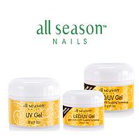 All Season Nails