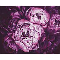 Картина по номерам Бархатные пионы (40х50 см)
