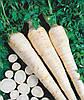 Семена корневой петрушки Оломунская 50 гр. Semo